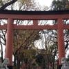 氷川参道から大宮氷川神社・日本庭園紅葉