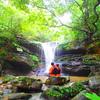 生命みなぎる原始の森へようこそ〜おすすめ西表島アクティビティ
