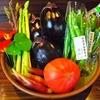 【オススメ5店】米沢(山形)にある創作和食が人気のお店