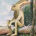 九月ウサギの手帖