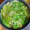 鶏レタス鍋