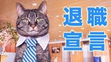 【退職記02】40歳からの退職。上司への退職宣言。