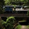 鉄道のチラリズム またまたまた定光寺駅へ