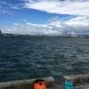 台風一過の厳しい釣り→イワシ・サバ・バーガー