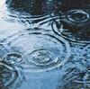 梅雨入り2019