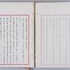 【世界の恥】ガイジン差別の日本国憲法