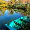 北川村モネの庭マルモッタンの風景
