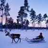 フィンランドの青年と知り合う機会があって考えた日本の将来について