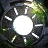 高知県来訪 県立牧野植物園