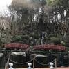 池泉回遊式の日本庭園「慧洲園」の中を散策します♪ 2月26日