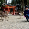 日本 奈良の春日大社