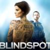 ブラインドスポット-シーズン1はhuluフールー,Netflix,U-NEXTで視聴できるか!?