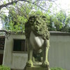 岩立天満宮の狛犬