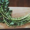 簡単*大根葉の高菜風レシピとさっぱり鶏胸肉そぼろご飯の作り方*ご飯のお供にも♬