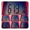 今週の体重、61.3kg