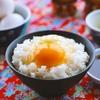 卵かけご飯にオススメのたまご!醤油ダレの作り方!