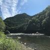 #2018-15 【山梨県桂川】人も魚も少なくなった桂川、サイズアップしてました!