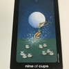 sun and moon tarot : nine of cups - happiness