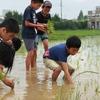 「親子農業体験 2018」  参加者募集!!  *募集を締め切りました