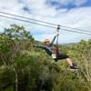"""ニュージーランド旅行記7 ワイヘキ島でアクテビティ""""ZIP LINE""""体験!"""
