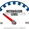 【ダイエット】基礎代謝と1日の消費カロリーについて。
