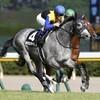 タコイチの【勝負レース回顧】日本海S!