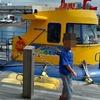 三崎港のにじいろさかな号に乗ってきました