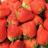 苺のデザート!