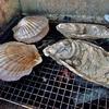 天然牡蠣が最高に美味しかったわ!