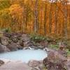 新潟県の秘湯、燕温泉で混浴露天風呂を無料で楽しめる「河原の湯」!