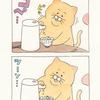 ネコノヒー「お茶漬け」