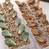 葉挿しを製氷トレーに。白牡丹(30日目)とブロンズ姫(111日目)