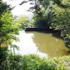 群馬県太田市 金山の池