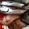 本日の漁港直送の魚たち(^^;)