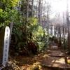 熊野古道① カミーノの兄弟、もう1つの道の世界遺産、熊野古道とは?