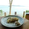糸島の絶景レストラン「HACHIDORI」でランチを堪能!スムージーと真空低温調理のお肉が激ウマだった