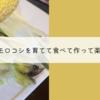 トウモロコシを育てて食べて、作って楽しむ