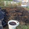 畑の豚プン堆肥にEM追加。