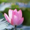 【Thanks♡】読者登録100人ありがとうございます...!
