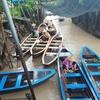 【ベトナム新婚旅行!日帰りメコン川クルーズ編】肥沃な三角州、メコンデルタで育つ果物や動物たちの記録