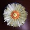 兜丸の花のように輝く太陽を求む!