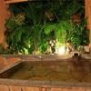 【別府市】陽だまり温泉 花の湯~うみたまごと温泉で楽しむアフター5