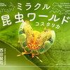 コスタリカに行くなら おすすめの昆虫の本 厳選2冊 子連れコスタリカ旅行