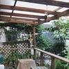 庭の物干し台のクマバチを駆除