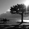 【写真の修復専門店】綺麗な景色の白黒画像イメージしてカラー画像に