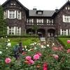 ミモザ・ガーデンの日記 旧古河庭園のバラ