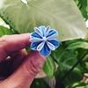 つまみ細工  紫陽花の希少品種  万華鏡を作る~❗️