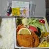 【駅弁】生野菜たっぷり!「高原野菜とカツの弁当」