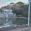 天ヶ谷戸遊水池(神奈川県鎌倉)