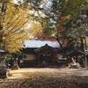愛媛の紅葉レポート 稲荷山公園